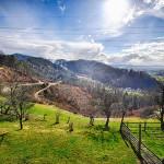 Turistična kmetija pri Lazarju - Piknik prostor za službene in privat zabave